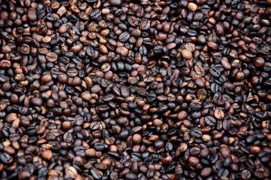 robusta  coffee beans_550.jpg